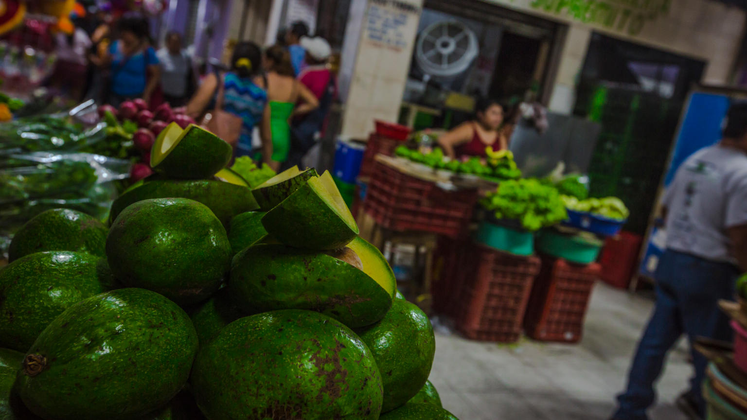 Mexico-Merida-Food-Market-Avocados-Oana-Dragan